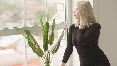 EvelinaSilva