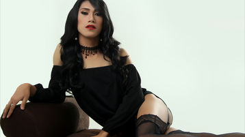 WildQueenSucker's hot webcam show – Transgender on Jasmin