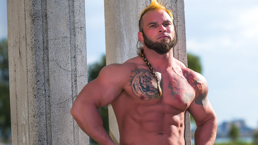 viking28's profile picture – Gay on LiveJasmin